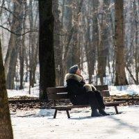Ну, вот и весна! :: Владимир Безбородов
