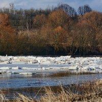Лёд тронулся.... :: Paparazzi