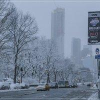 тёплый привет зимы уходящей :: Petr @+