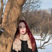 зимний портрет :: Сергей Тетерев