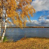 Осень. Берег Волги. :: Борис Руненко