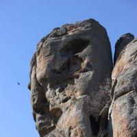 Демерджи, Крым :: Марина