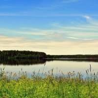 Летом на озере :: Leonid Tabakov