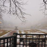 Золотом по туману.. :: tipchik