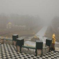 Золотом по туману :: tipchik