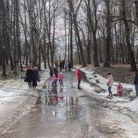 Прогулка в парке! Весна приходит! :: Олег Фролов