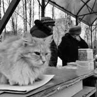 За не дорого отдам . :: Святец Вячеслав