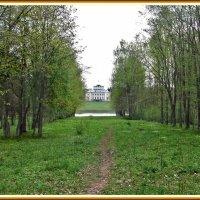 Старый парк :: Наталья