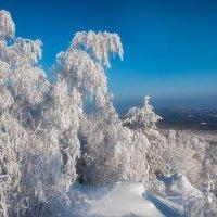 Белое на голубом :: vladimir Bormotov