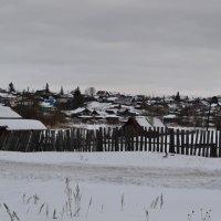 Серый февральский день. :: Людмила Якимова