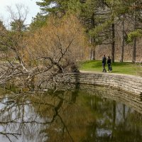 Весна в парке Торонто (High Park) :: Юрий Поляков