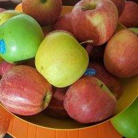 Яблоко спелое,яблоко сладкое... :: Ирина