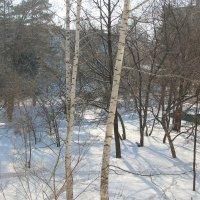 Вид из окна :: Олег Афанасьевич Сергеев