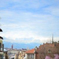 Весна в Турино :: Nina Streapan
