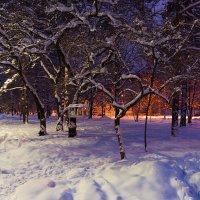 Вечерняя прогулка по Хабаровску :: Оксана Успенская