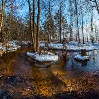 Весенний ручей полный света и пробуждения! :: Фёдор. Лашков