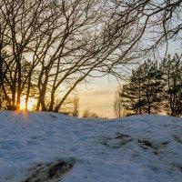 Закат в конце зимы :: Юрий Стародубцев