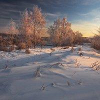 Как-то утром в январе... :: Александр Попов