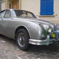 Jaguar :: Игорь