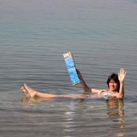 Мертвое море, Иордания :: Лев