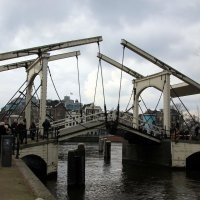 Мост :: Olga