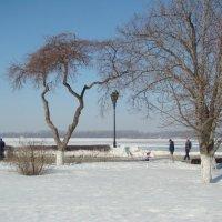 В марте на набережной :: марина ковшова