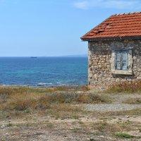 Путь к морю :: Мария Тишина