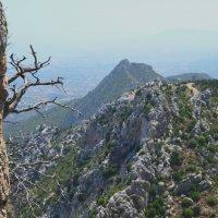 в горах :: Мария Тишина