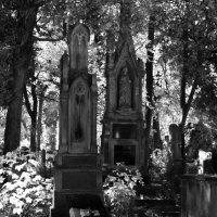 Gothic. :: Андрий Майковский