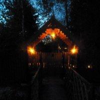 Вечерняя подсветка-2 :: Регина Пупач