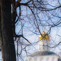 Золотые ворота :: Александр