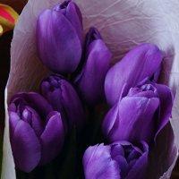 Немного весны не помешает :: Ирина Божко