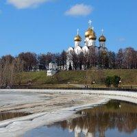 Весна златоглавая :: Николай Белавин