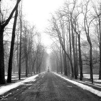 Одиночество..)) :: tipchik