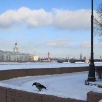 На набережной реки Невы. :: Валентина Жукова