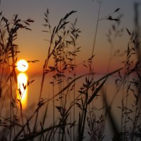закат на волге :: Andrei Antipin