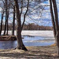 Отступает лёд от берегов... :: Лесо-Вед (Баранов)