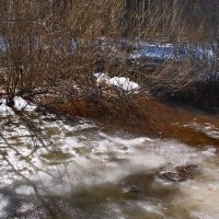 Из снега вновь рождается вода...(Этюд) :: Лесо-Вед (Баранов)