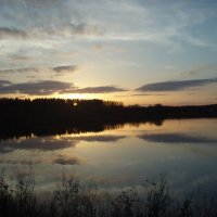 Evening / Vakaras :: silvestras gaiziunas