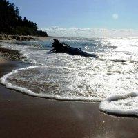 Море :: Александр Михайлов