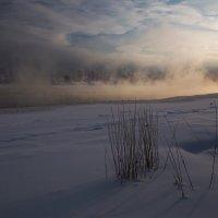 Солнце зимнее взошло... :: Александр Попов