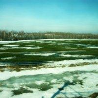 Еще в полях белеет снег, озимые уж дружно всходят! :: Надежда