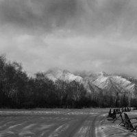 Пасмурно, перед снегом. :: Александр Ефремов