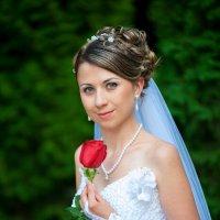 Невеста с розой :: iv12