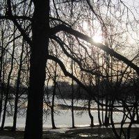 Головинские пруды. Весна. Закат :: Дмитрий Никитин