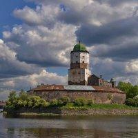 Выборгский замок :: Ольга СПб