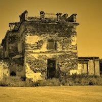 Разрушенный храм села Щербаковское :: Михаил Полыгалов