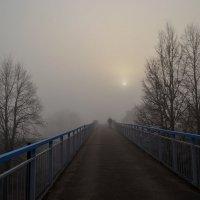 В тумане. :: Оксана Евкодимова