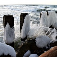 Морская волна :: Марина