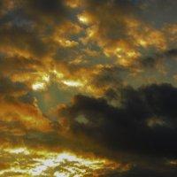 вечернее солнце :: Марина Ринкашикитока